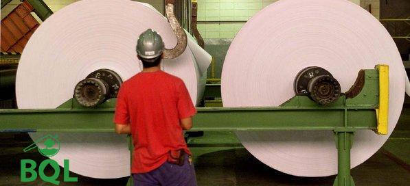 bobina de papel indústria de papel e celulose