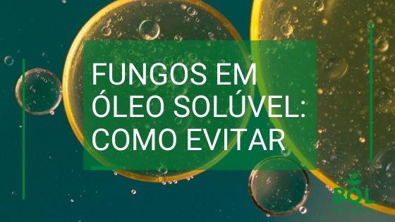 Fungos em óleo solúvel: Como evitar